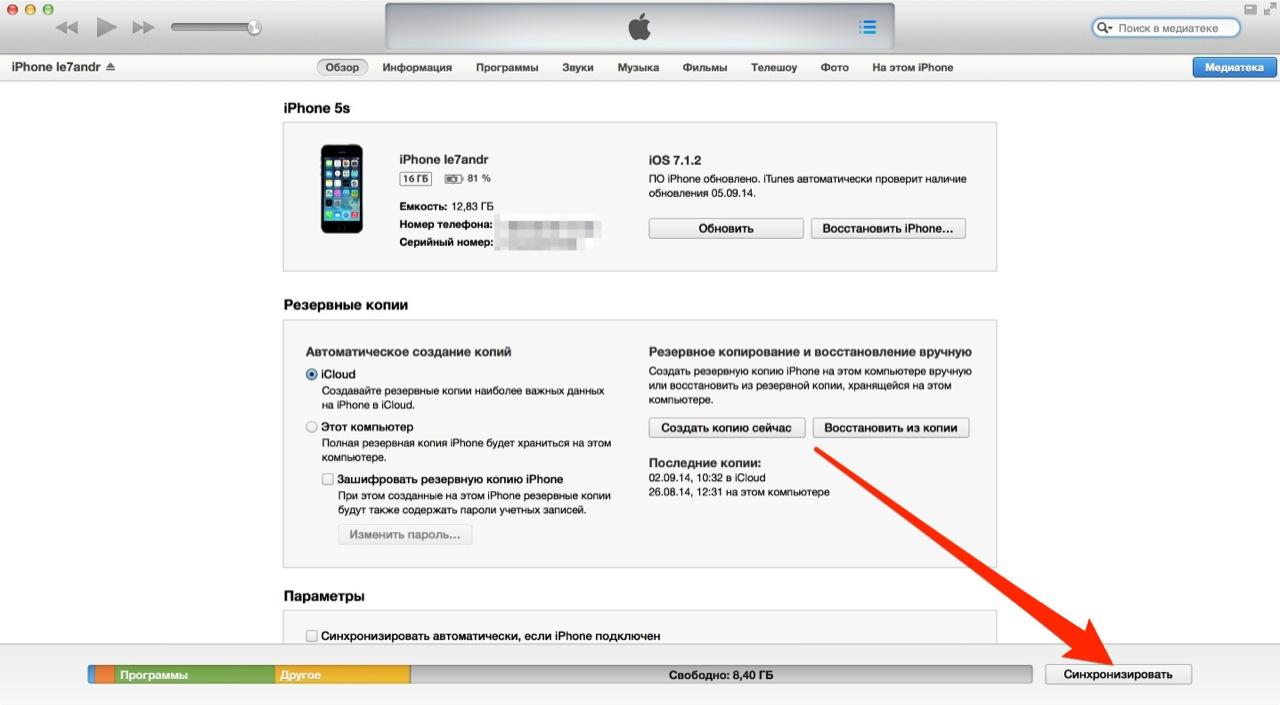 Экран настройки синхронизации и восстановлени iPhone в iTunes