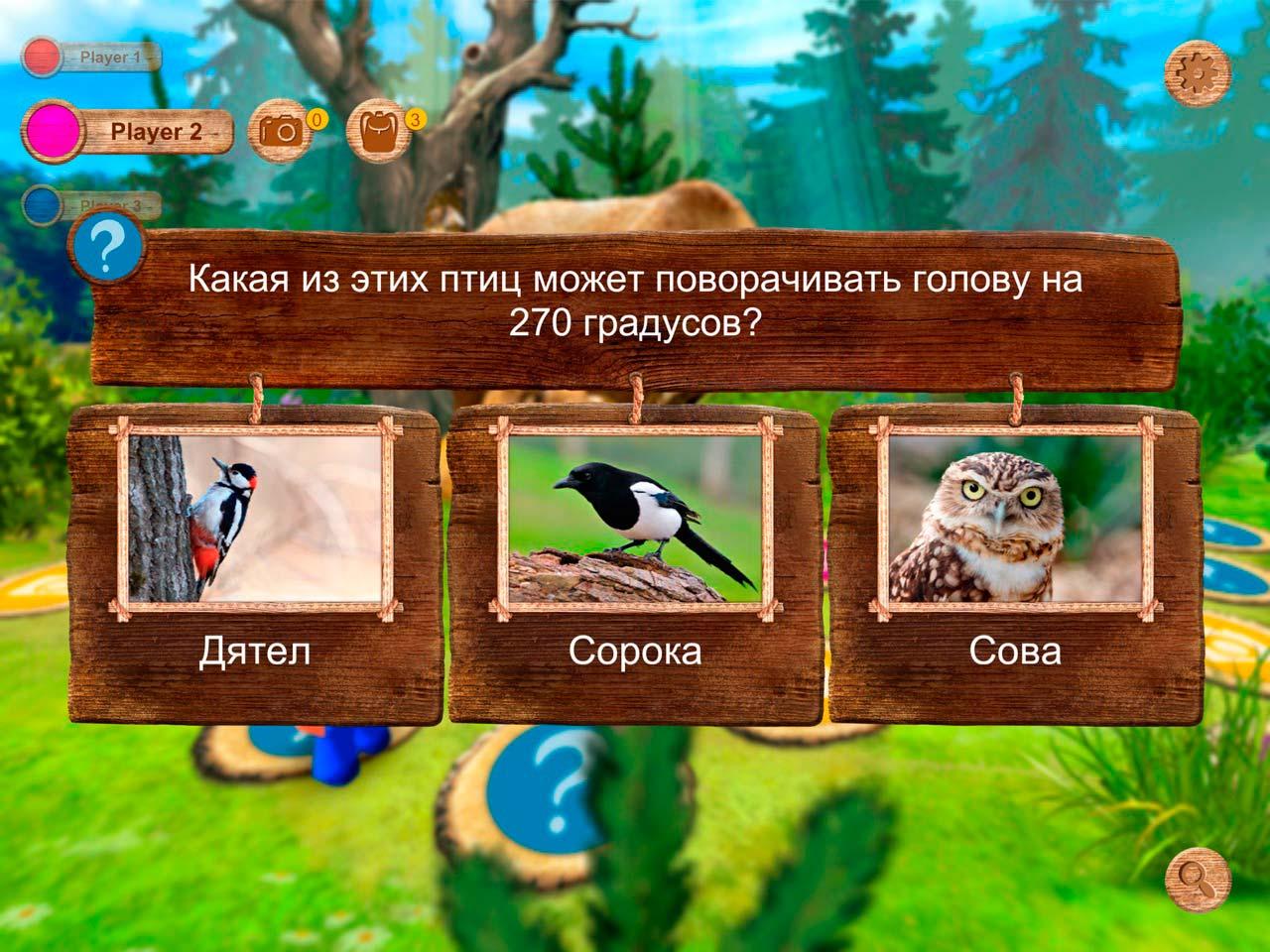 Вопросы в Forest Quest