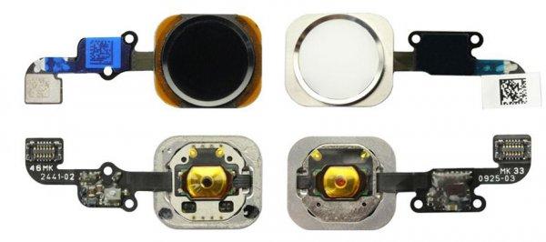 Новые фото деталей iPhone 6: Wi-Fi-модуль, Touch ID и другие