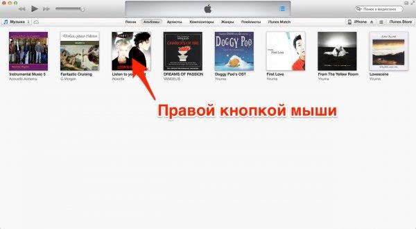 Сведения о файле в iTunes