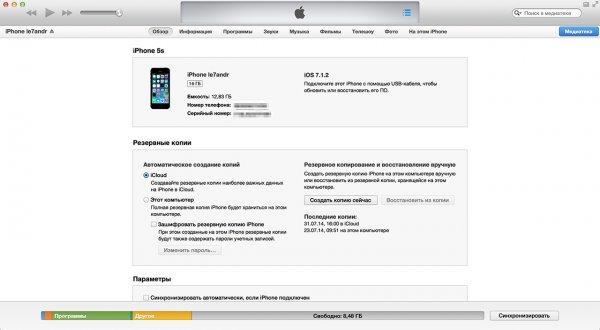 Вкладка Обзор в меню Устройства в iTunes