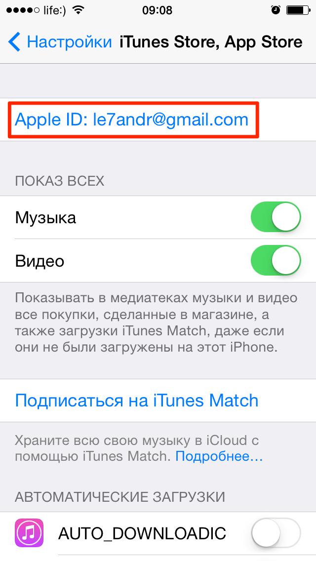 Меню iTunes Store, App Store в настройках iPhone